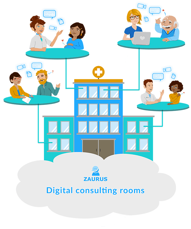 Zaurus digital consulting rooms visualization
